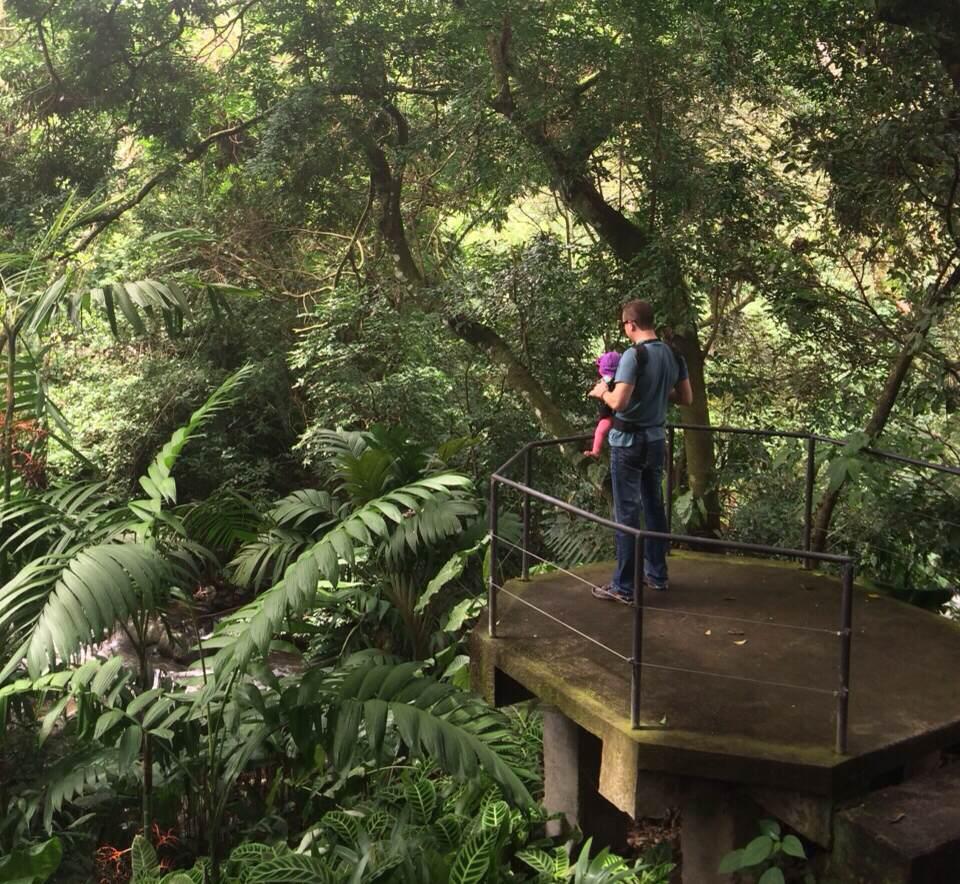 7 de los mejores lugares en costa rica para pasear con for Bodas en el jardin botanico de rio piedras